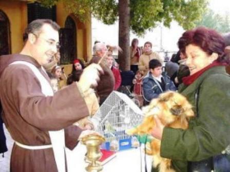 Fiesta San Antón Elche-Bendición de animales